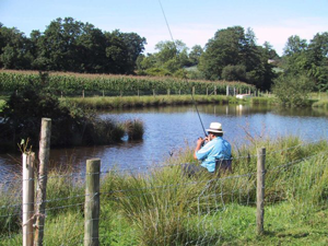 Fishing lake at Pyesmead Farm